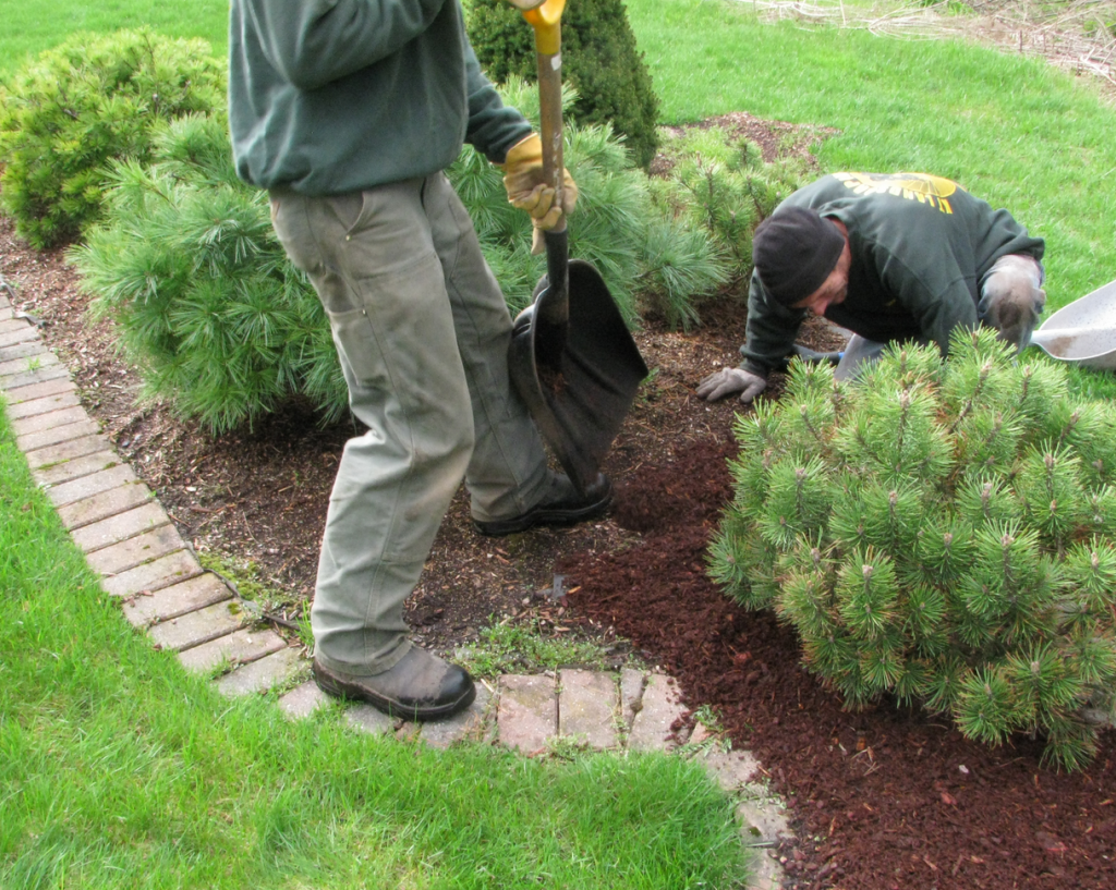 Spring Clean Up - Landscaping